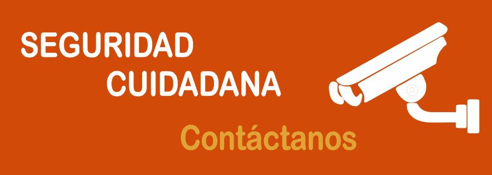 SEGURIDAD CUIDADANA